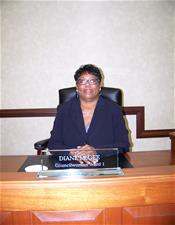 Vice Mayor Diane McGee